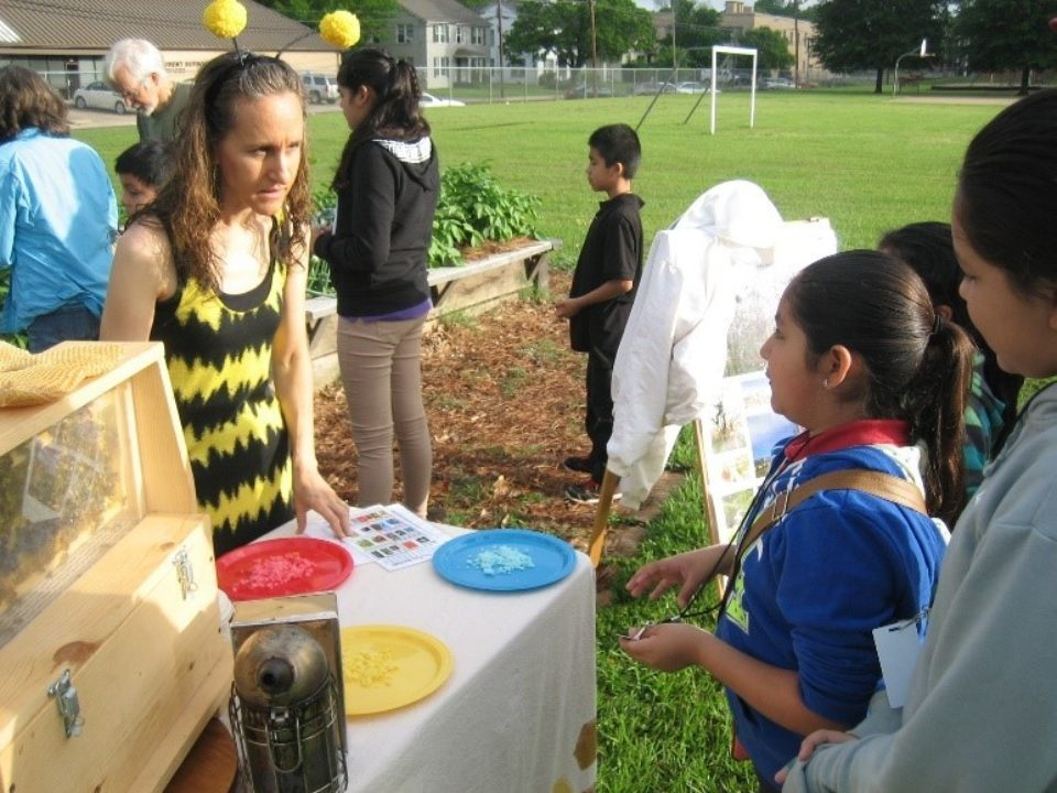 Teaching Kids About Honey Bees